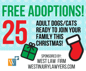 West Law Firm Pet Adoption Sponsorship infographic