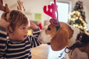 Boy with his new dog at Christmas